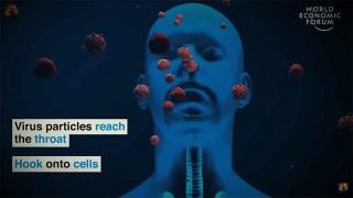 सीसीएमसी  समिति बैठक :  'उपत्यकामा कोरोना संक्रमणको जोखिम उच्च  रहेको निष्कर्ष'